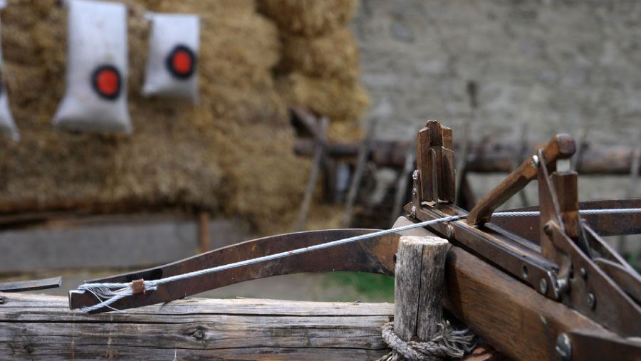 The Different Types of Crossbows - Strongnia